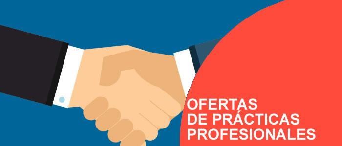 OFERTA DE PRACTICA PROFESIONAL